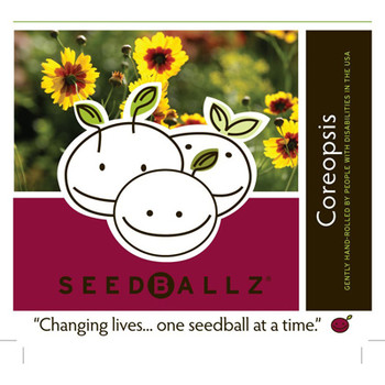 Seedballz Coreopsis - 8 Pack