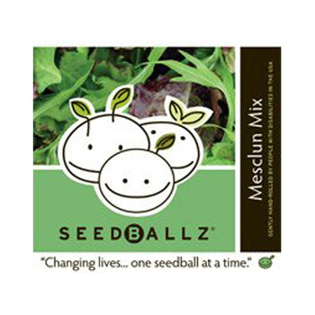 Seedballz Mesclun Salad - 8 Pack