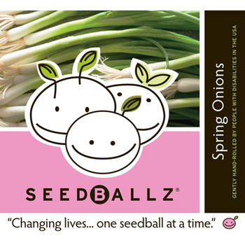 Seedballz Spring Onions - 8 Pack