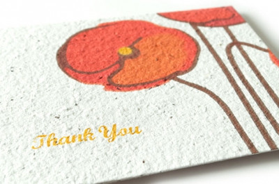 Poppy Thank You Seed Card