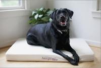 Natural Organic Dog Bed