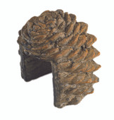 Real Fyre Pine Cone Dectorative Remote Cover