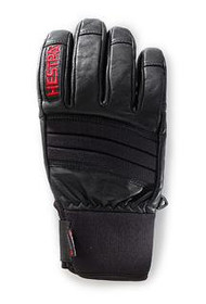 Hestra Fall Line Alpine Pro Gloves