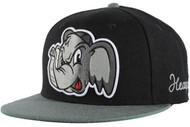Neff Heavyhitter Cap 2013