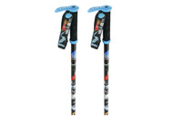Line Pollard's Paint Brush Ski Poles 2013