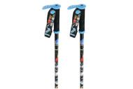 Line Pollard's Paint Brush Ski Poles 2013