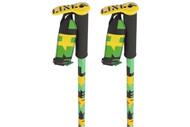 Line Pin Ski Poles 2013