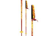 Line Tac Ski Poles 2014