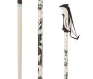 Salomon Arctic Lady Women's Ski Poles 2016