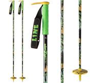 Line Whip Ski Poles 2017