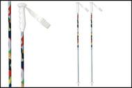 Roxy Shazam Ski Poles