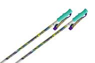 K2 V4 Ski Poles- Brushed Aluminum