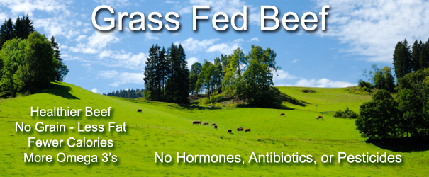 Why Buy Grass Fed Beef?