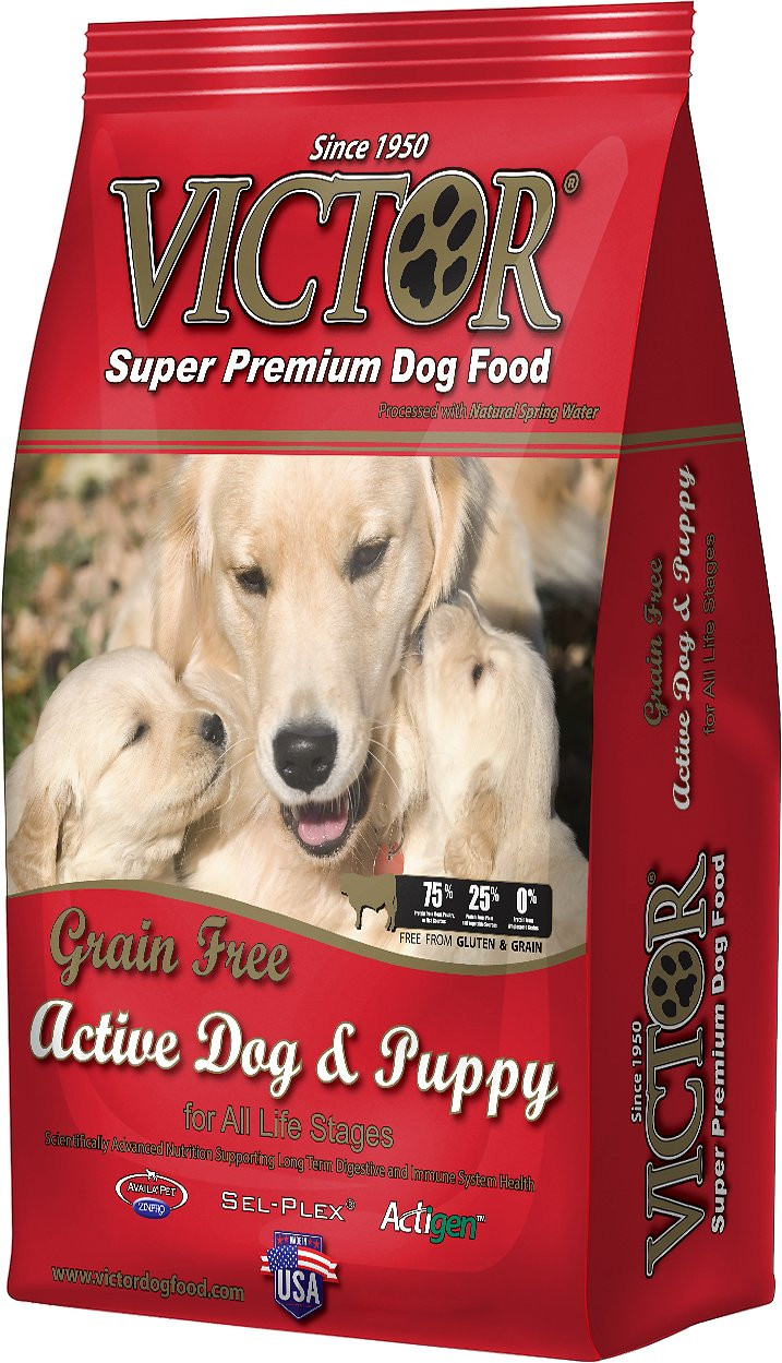 Victor Grain Free Active Dog and Puppy Formula Dry Dog ...