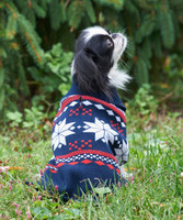 Ethical Fashion Pet Sweater Snowflake Blue