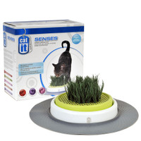 Catit Senses Grass Garden Kit 2pk