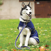 Horseware Amigo WP Dog Coat - Navy