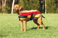 WeatherBeeta WeatherBeeta Double Bonded Fleece Dog Coat - Gold/Whitney Stripes
