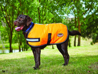 WeatherBeeta 300D Reflective Parka Dog Coat - Orange