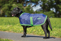 Weatherbeeta 420D Windbreaker Dog Coat Navy/Lime