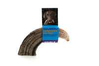 Icelandic Large Lamb Horn Dog Treat