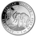 2017 Elephant