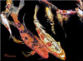 ORANGE KOI FISH IN DARKNESS by Artist McKenzie