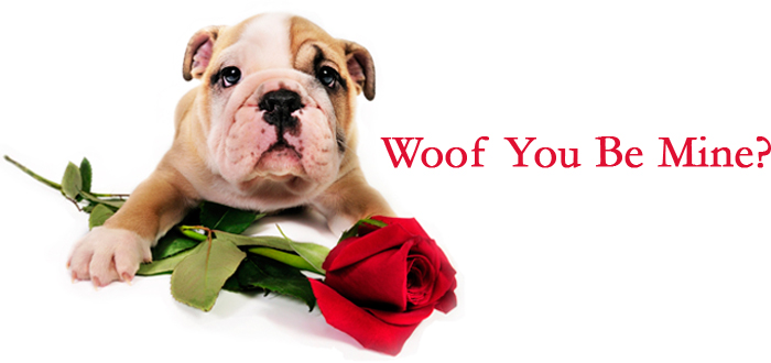 Woof You Be Mine?