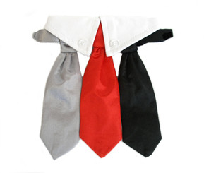 Formal Satin Neck Tie and Collar Set