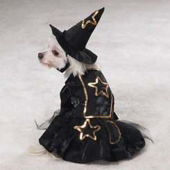 Lil' Witch Pet Costume