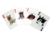 Kikkerland Plastic Waterproof Cats Playing 3D Cards