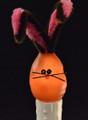 Chocolate Bunny Bulb