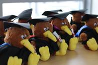 AUT Graduation Kiwis includes colour hood