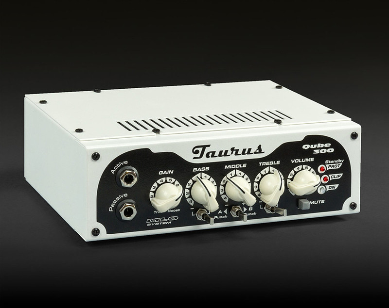 Taurus Amplification Qube-300 - 300W RMS Light Weight Bass Head
