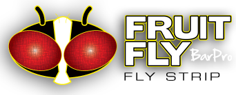Kill Fruit Flies & other pests