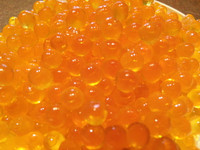 2013 2nd batch salmon roe