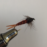 Bird's Stonefly - Brown 2pk.