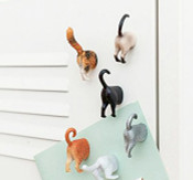 Cat Butt Magnets - set of 6