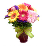 Colorful Gerbera Daisy Bouquet