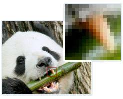 gloss_pixel.jpg