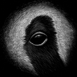 jon-windham-panda-icon.jpg