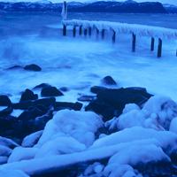 winter-artmuse.jpg