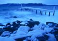 Icy Storm | Lene Foss