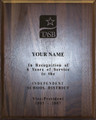 "Customized Award: 8"" x 10"" Laser-etch (Taxable)"