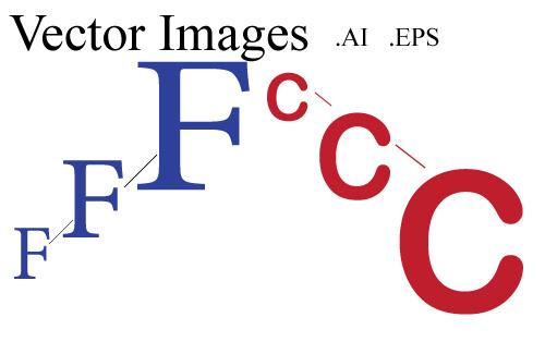 vector-head.jpg