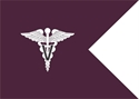 veterinary guidon