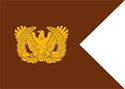 warrant officer guidon