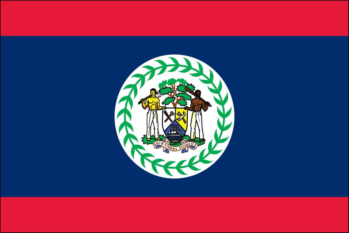 """Belize - 4"""" x 6"""" Minature Stick Flags"""