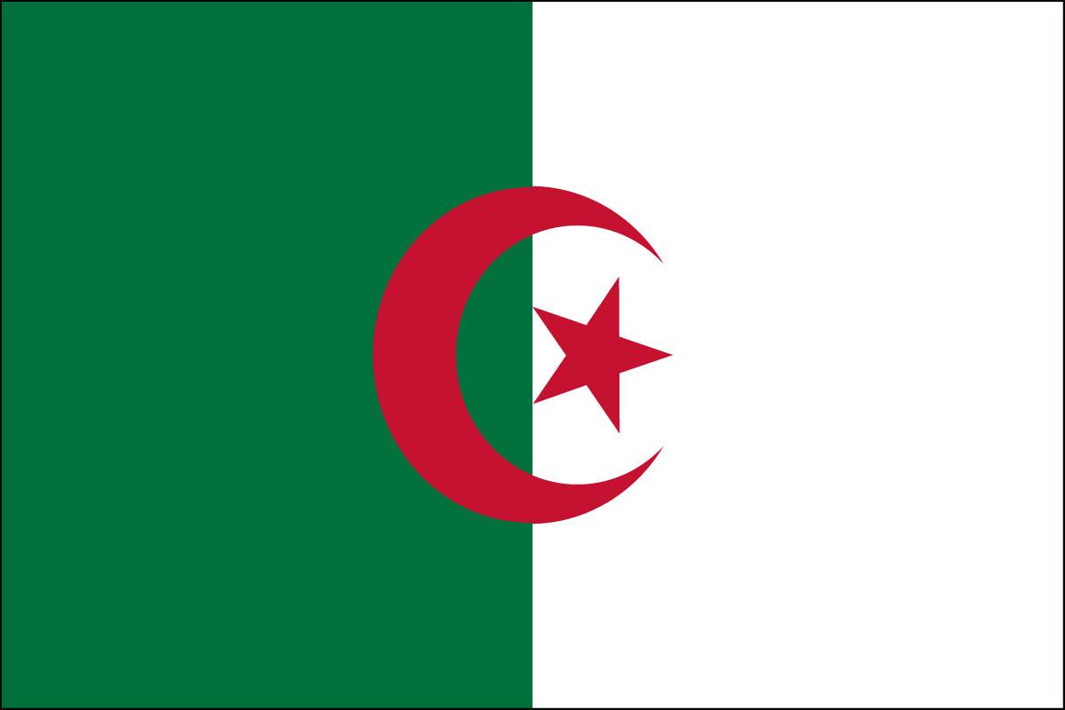 """Algeria - 4"""" x 6"""" Minature Stick Flags"""