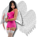 White Feather Wings Adult Dozen 4455D